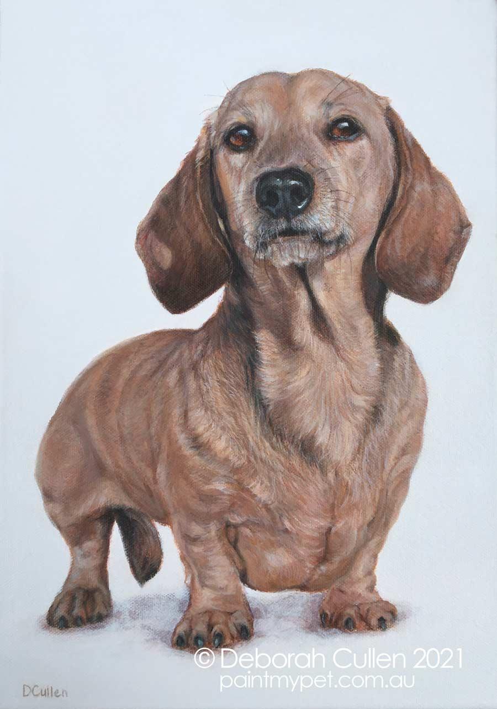 Charlie, acrylic on canvas, painting