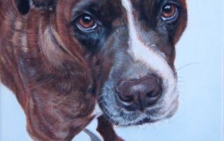 Lucy - commissioned dog portrait