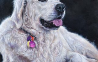 Commissioned dog portrait of a Blonde Labrador