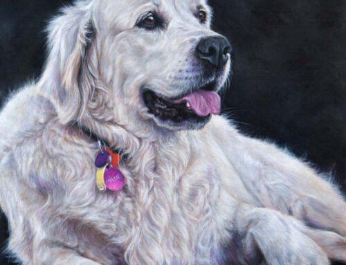 Millie – Blonde Golden Retriever Dog Portrait Painting
