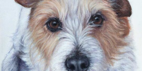 Dog painting of a Jack Russell
