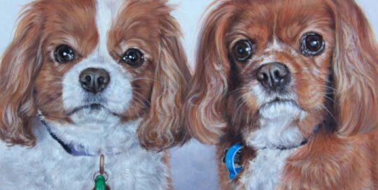 A pair of King Charles Cavaliers painting