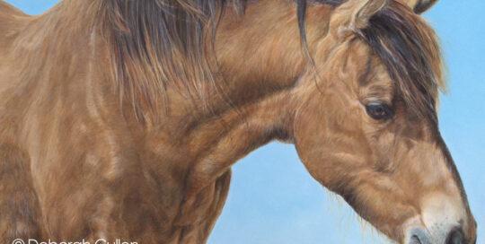 Shakespeare horse portrait